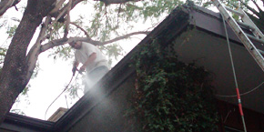 gutter-cleaning-flagstaff-az